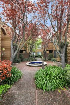 29 Cove Ln, Redwood City #3